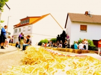 Seifenkistenrennen2014_14
