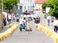 Seifenkistenrennen2014_26